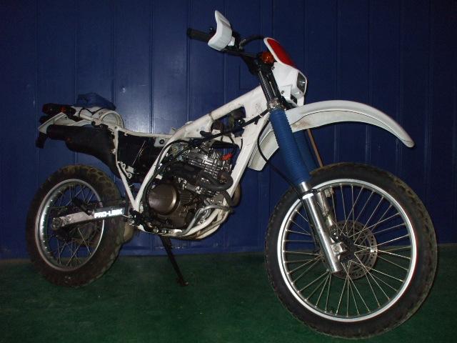 XLR250R-001画像