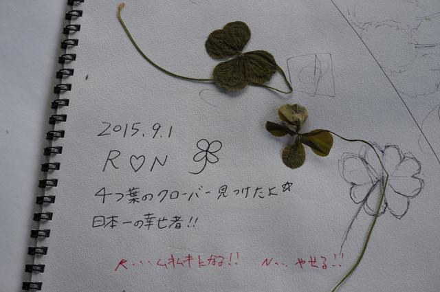 4つ葉のクローバー